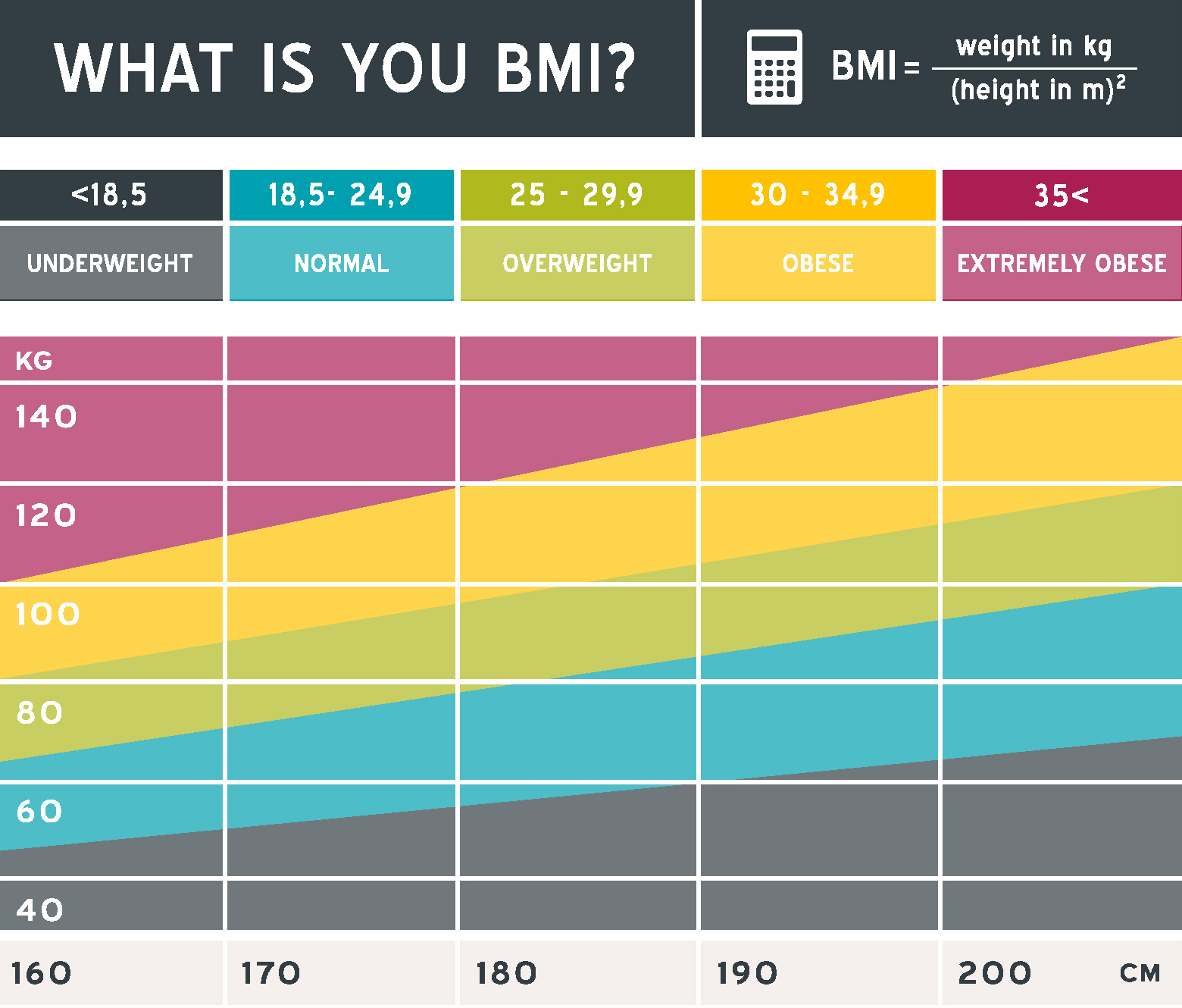 Watch Whip Out Your BMI Calculator video